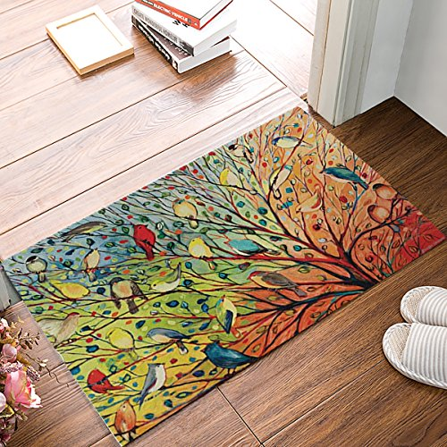 KAROLA Doormat Entrance Mat Floor Mat Rug Indoor/Bathroom Thin Mats Rubber Non Slip (30