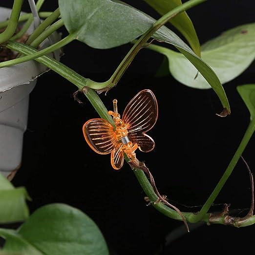 Ycncixwd 30 Unidades Mariposa orquídea Clips Planta Clips Jardín ...