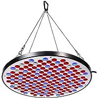 Niello Panel de luz LED Grow Serie 50W