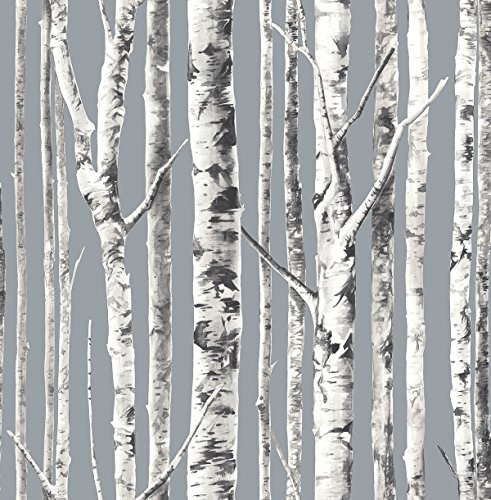 Birch Wallpaper (Silver) Trees Forest White Black Classic Nursery Double Roll ()