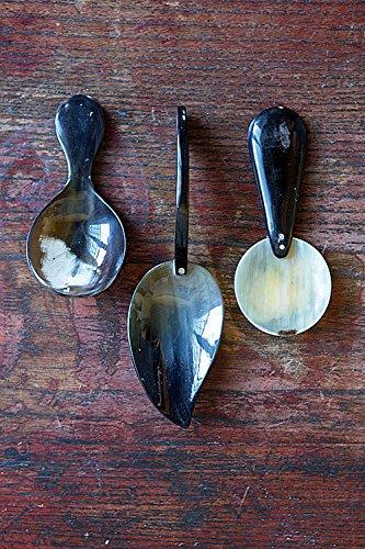 Vagabond Vintage, Set of 3 Horn Tea Spoons