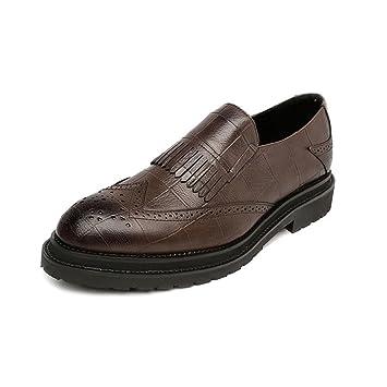 HILOTU Zapatos de Vestir Oxfords para Hombres Mocasines clásicos Decoración con borlas Zapatos de Negocios Transpirables (Color : Marrón, tamaño : 40 EU): ...