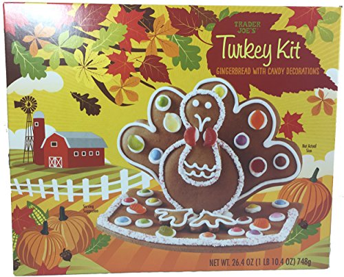 Trader Joes Gingerbread Turkey Kit
