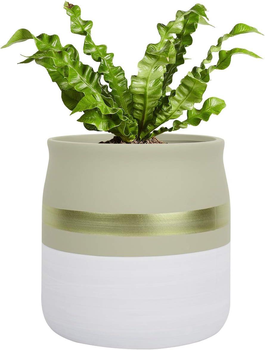 Ceramic Flower Pot Indoor Planter - 5.5 Inch Round Plant Pot with Gold Detailing, White & Beige