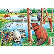 Cobble Hill The Beaver Pond (Tray Puzzle)