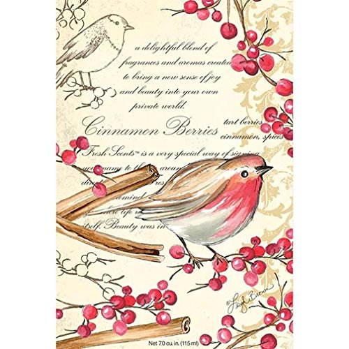 Fresh Scents Willowbrook Scented Sachet Set of 6 - Cinnamon Berries by Fresh Scents (Image #1)