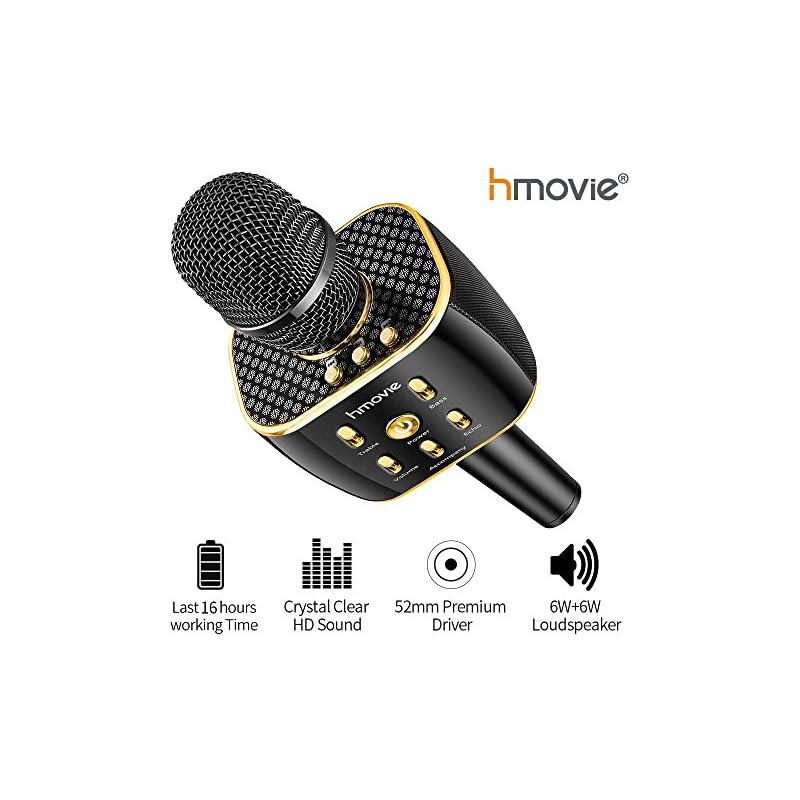 Karaoke Machine Pro Wireless Karaoke Mic