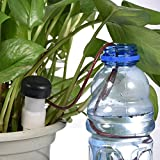 Secologo 8 pcs/Lot Indoor Auto Drip Irrigation Watering System Automatic Plant Waterers For Houseplant Seen Novelty Households
