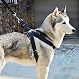 Dog Leash Harness No-Pull 2 FREE ID TAGS , DIBESTS Adjustable and High Quality Denim Dog Training Walking Leash Collar for Large/Medium/Small Dog (L)