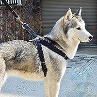 Dog Leash Harness No-Pull + 2 FREE ID TAGS , DIBESTS Adjustable and High Quality Denim Dog Training Walking Leash Collar for Large/Medium/Small Dog (XL)