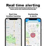 ShieldGPS Hidden GPS Tracker for Cars & Vehicles