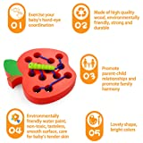 Montessori Activity Wooden Toys, Apple Wood
