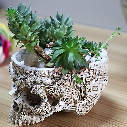 Macetero de cabeza tallada a mano con forma de calavera, maceta para jardín, suculenta, maceta para decoración del hogar, oficina, escritorio: Amazon.es: Jardín