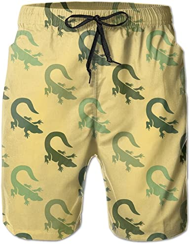 SARA NELL Mens Swim Trunks Cartoon Funny Dinosaurs Surfing Beach Board Shorts Swimwear