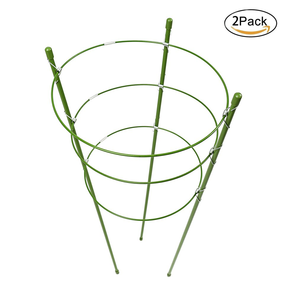 Pannow 24inch Large Plant Support Rings, 2 Pack Garden Trellis Tomato and Plant Support Cage Stand Stainless Steel Support for Climbing Flowers Vegetables Fruit