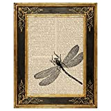 Dreamery Studio, Dragonfly Art Print on Upcycled Antique Book Page, 8x10.5