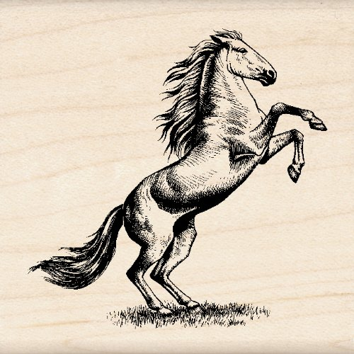 Inkadinkado Horse Wood Stamp for Scrapbooking and Card Making, 1 Piece 2.25'' W x 2.25'' L