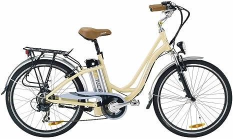 Tucano FW Vinta - Bicicleta eléctrica deportiva (Motor 250W - 36V ...