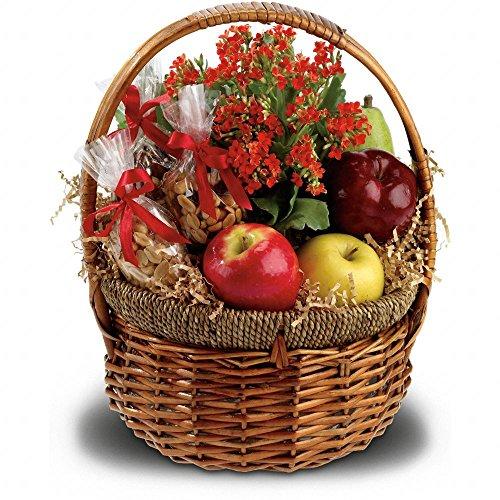 Health Nut Basket - Food Basket Delivery - Gift Baskets