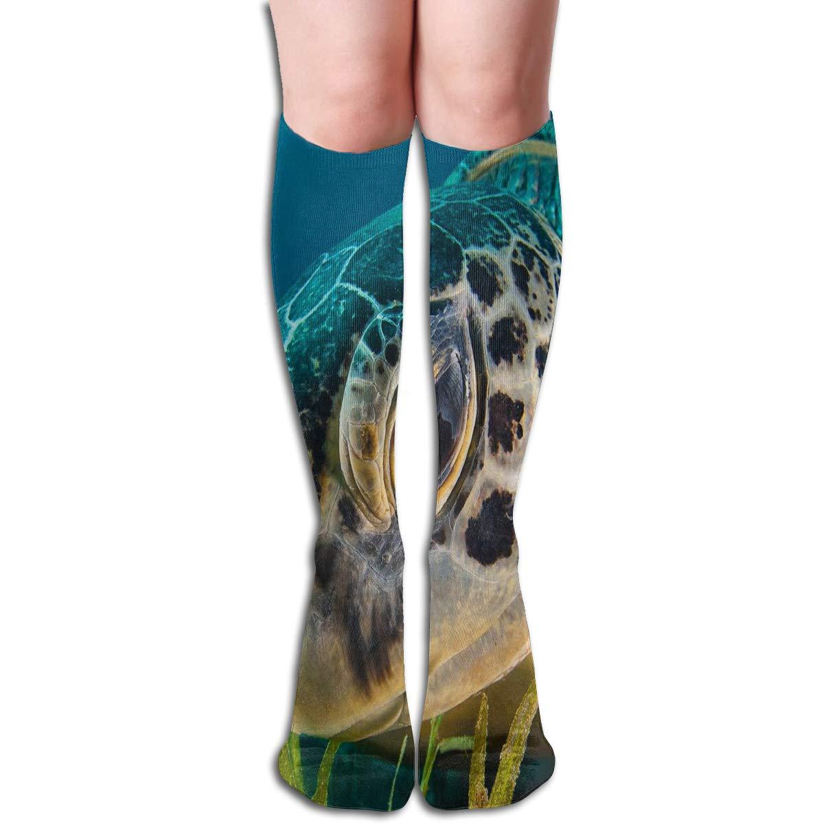 Girls Socks Over Knee Sea Turtles Images Winter Amazing For Festive