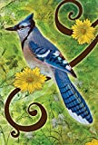 Toland Home Garden Blue Jay House Flag, Large