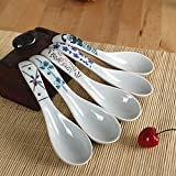 XYTMY Ceramics Soup Spoon Hand Painted Flower Porcelain Handle Chinese Asian Rice Spoon Appetizer Tableware set of 5 Light Weight Gift For Housewife Friends Family