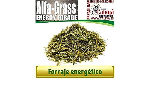 Open&Feed Alfa-Grass 20 Kg (Palet 35 Unidades): Amazon.es: Productos para mascotas