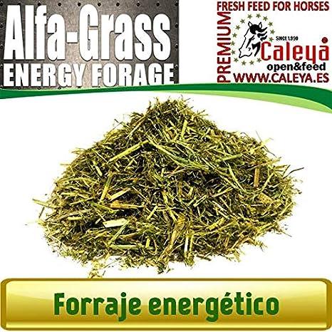 Open&Feed Alfa-Grass 20 Kg + Viruta Extra (Palet 12 + 6 Unidades)