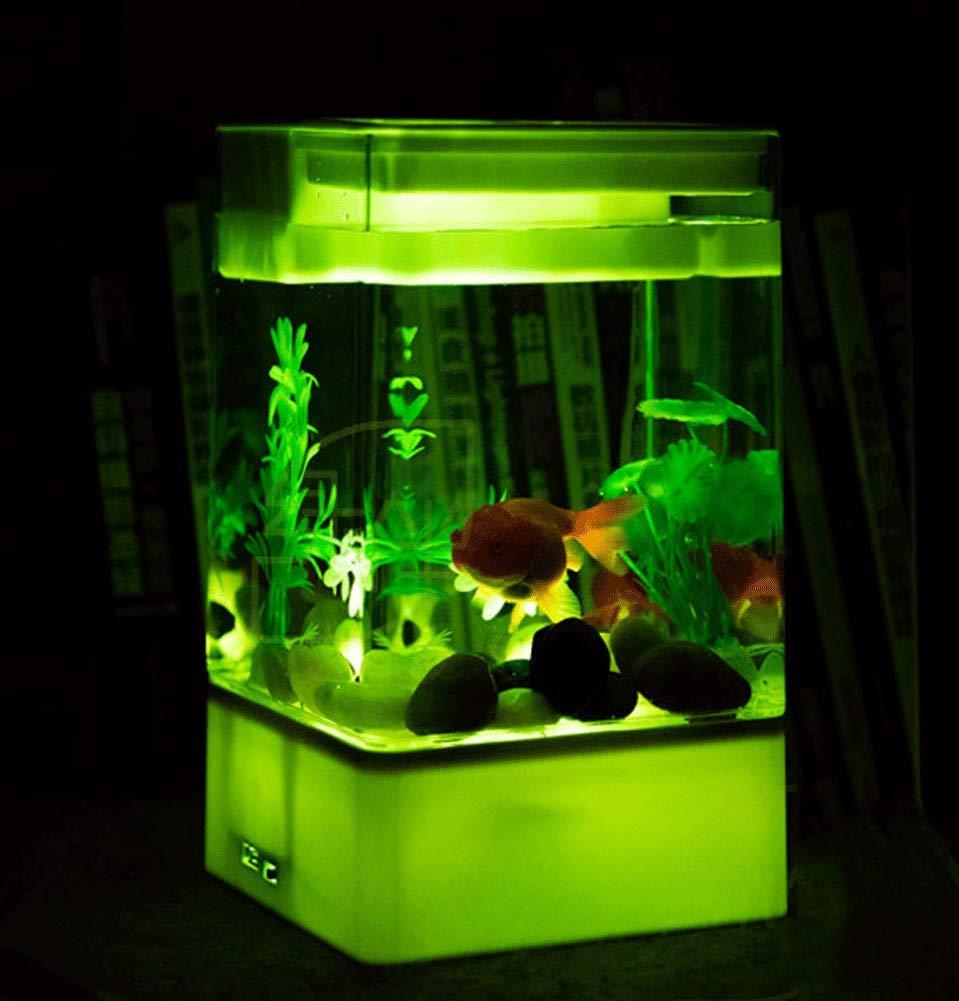 JIANGU Acuario pequeño - Mini pecera de acrílico autolimpiable, Escritorio de Oficina, Acuario de Flores Transparente, 15 x 15 x 26 cm: Amazon.es: Productos ...