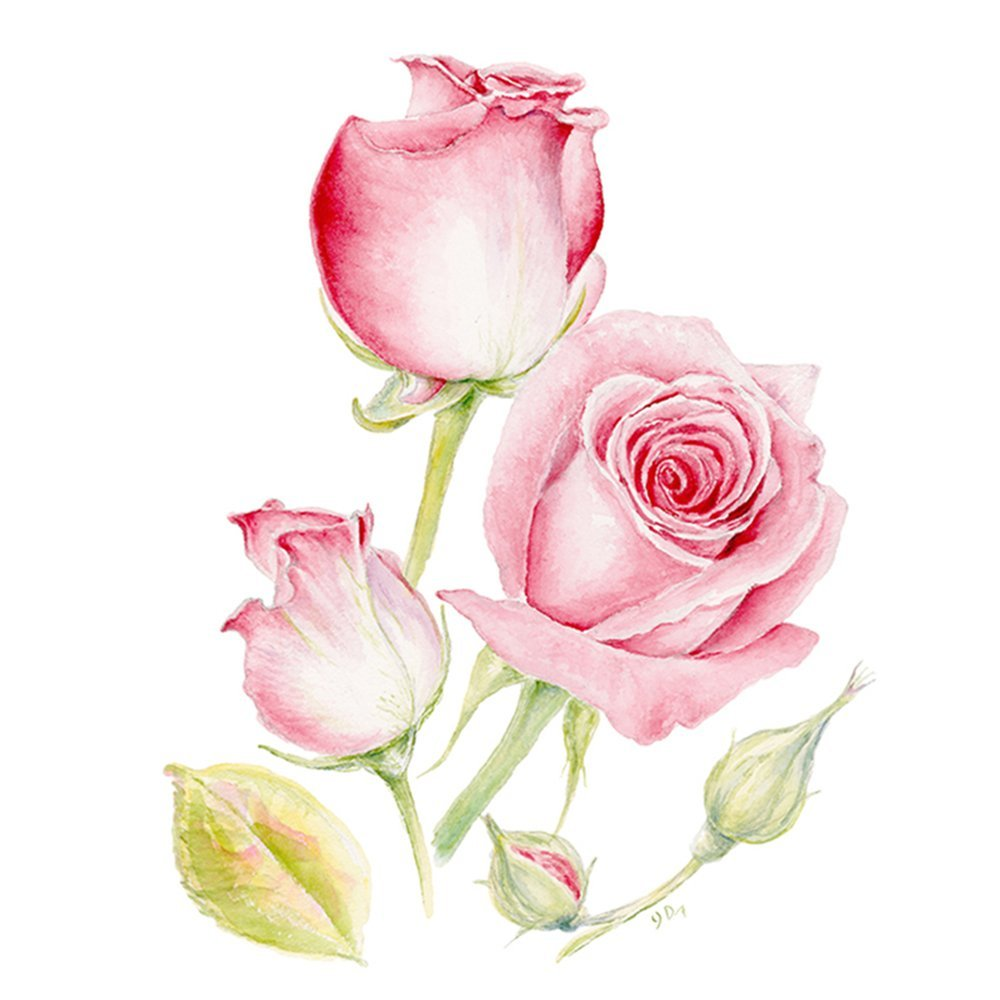 Rose art print rose wall decor rose watercolor rose wall art rose painting pink flower art pink floral print