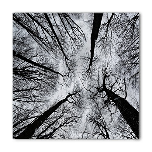 Ambesonne Unisex Bandana, Forest Dark Winter Forest Tree, Grey Black ()
