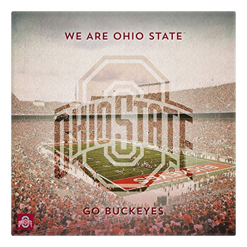 Replay Photos 1408582-2424C Ohio State University Overlay Gallery Wrapped Canvas Art, 24