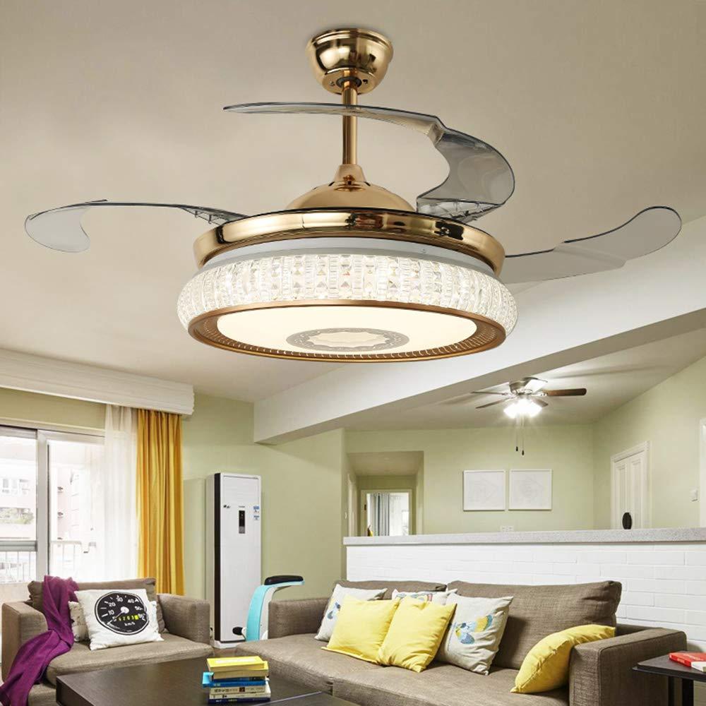 Amazon.com: TiptonLight - Lámpara de techo para ventilador ...