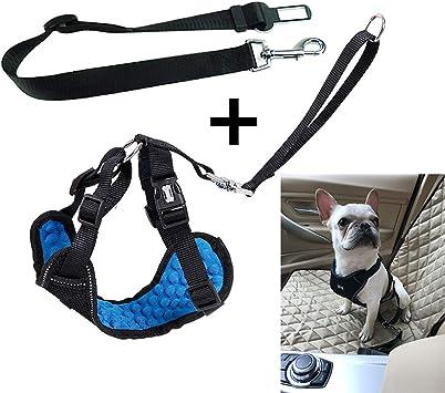 DROMEZ Arnés para Perro y Cinturón de Seguridad de Coche para ...