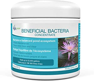 Aquascape Dry Beneficial Bacteria for Pond and Water Features, 8.8-Ounce   98948