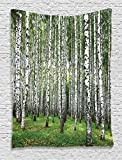 Ambesonne Farm House Decor Collection, Autumn Trees in Birch Forest September Time View Picture, Bedroom Living Kids Girls Boys Room Dorm Accessories Wall Hanging Tapestry, Green Grey