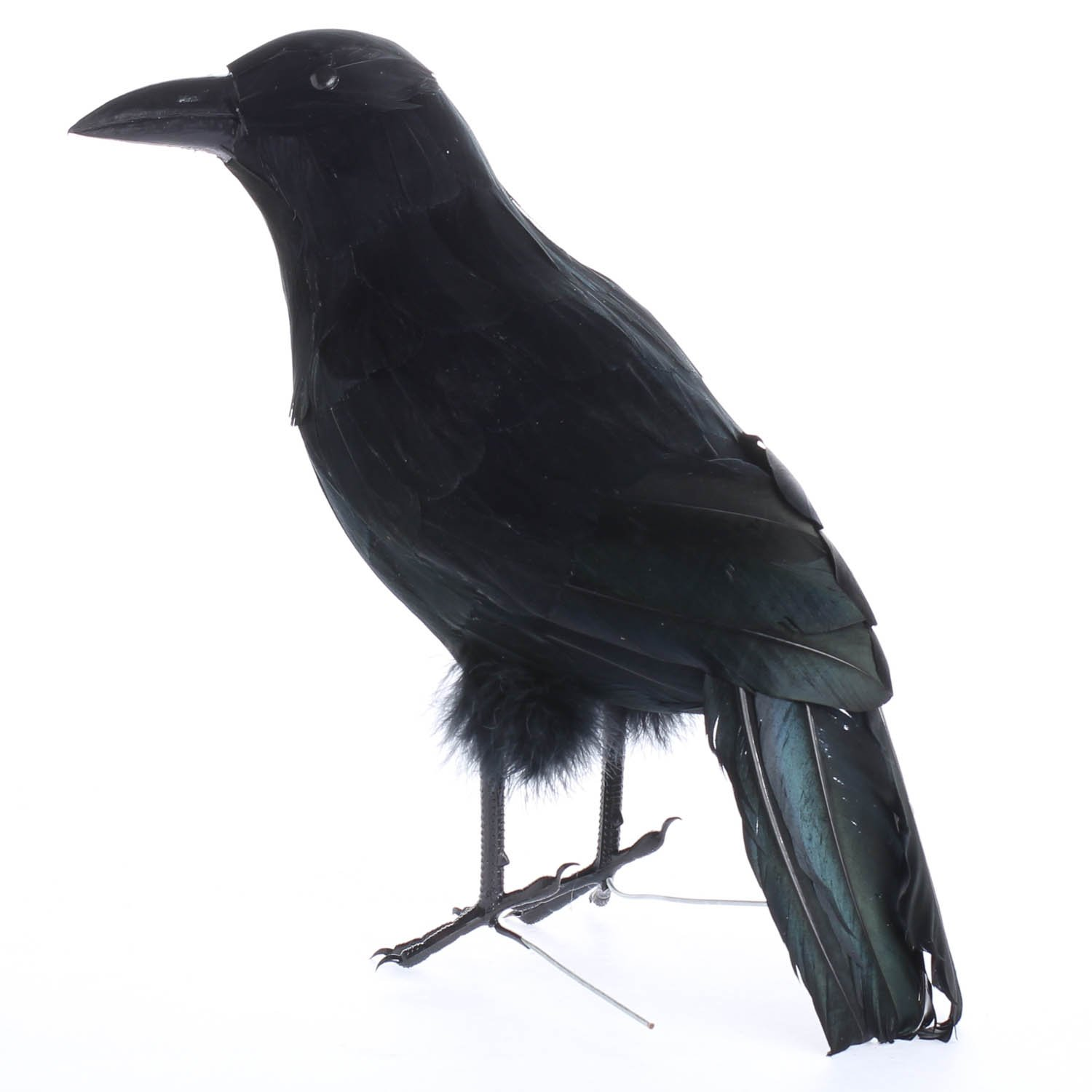 Black Feathered Large Halloween 13'' Artificial Crow; Very Realistic Looking! by Unknown (Image #4)