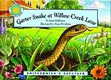 Garter Snake (Si By)
