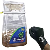 EXHALE The Original Homegrown CO2 365 SELF Activated XL Bag for Grow Room & Tent + THCity Gloves