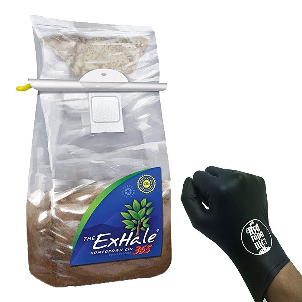 EXHALE 365 - SELF ACTIVATED CO2 BAG HOMEGROWN for GROW ROOMS & TENTS + THCiTY LIGHTNING GLOVES by ExHale