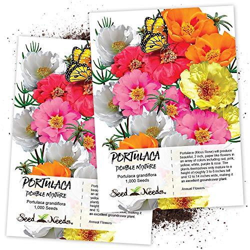 Seed Needs, Portulaca