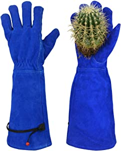Professional Thorn Proof Gardening Gloves for Women Rose Pruning & Cactus Trimming, Long Sleeve Heavy Duty Ladies Garden Gloves, Cowhide Leather (Medium, Blue)