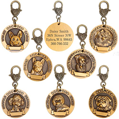 hipidog Dog Tags for Dogs Engraved- Personalized Puppy Tag Matching with 21 Breeds 3D Effect, Premium Copper Tag and Permanently Laser Engraved- Special Tags (Poodle) by hipidog