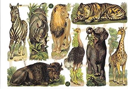 EF Glanzbilder gemischte Tierwelt III