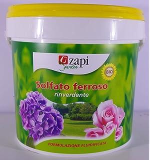 Sulfato de hierro granulado a granel 1 Kg: Amazon.es: Jardín