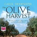The Olive Harvest   Carol Drinkwater