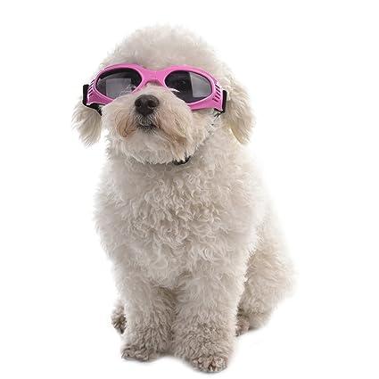 Sue Supply Gafas de sol para perro, gafas de sol doradas con diseño de perro y gafas de sol