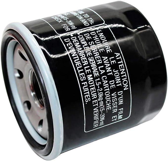 4X4 400 2002-2007 Road Passion Oil Filter for SUZUKI LTA400 EIGER AUTO 2X4 400 2002-2006 pack of 2