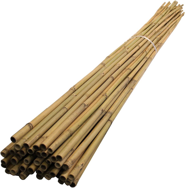 Elixir Extra Strong Bamboo Plant Support Garden Canes 8ft x 30 14-16mm diameter