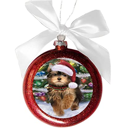 Trotting in The Snow Yorkshire Terrier Dog Red Round Ball Christmas Ornament  RBSOR49474 - Amazon.com: Trotting In The Snow Yorkshire Terrier Dog Red Round